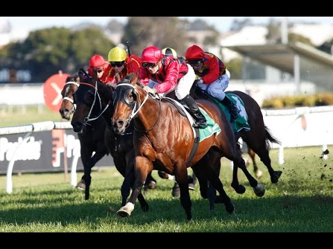 SHANNON STAKES-27SEP ROSEHILL