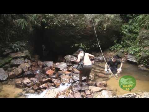 Provincia El Oro (Turismo - Ecuador) ECOTOURISM