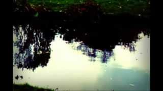 Watch Sandy Denny Blackwaterside video