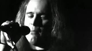 Watch Lynyrd Skynyrd Whiskey Rockaroller video