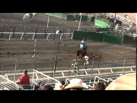Zoe All Around Horse For Sale video
