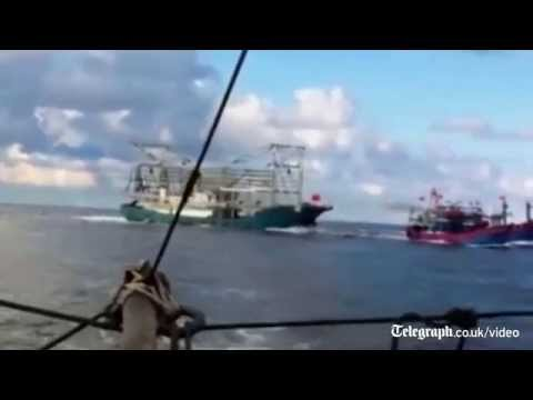 Vietnamese TV shows sinking of fishing boat