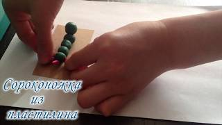 Сороконожка из пластилина. Centipede from plasticine