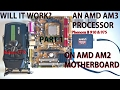 WILL IT WORK? AMD AM2 Motherboard with AMD AM3 Processor PART 1: Concept and Presentation