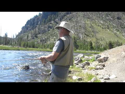 Fly fishing in Yellowstone Madison River July 2011.MOV