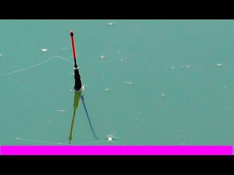 видео удилище для ловли карася