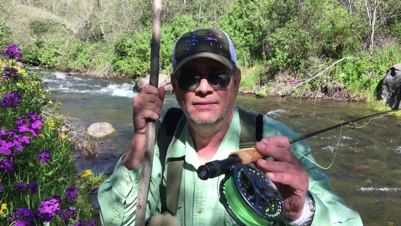 Montana Mountain Creek Dry Fly Fishing 213