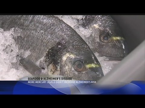 2 Your Health: Study links eating fish with healthier brains, regardless of mercury