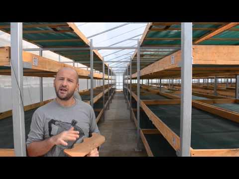 Coffee Solar - Cooperativa Capucas Barista & Farmer 2015