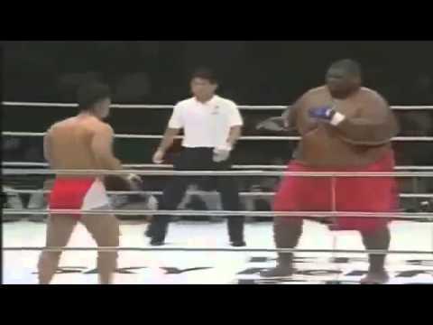 Смешной бой сумо против бокса