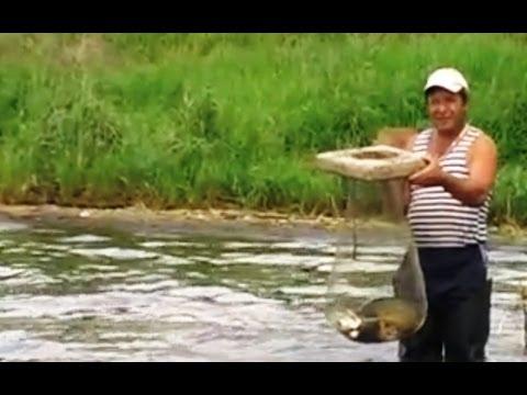рыбалка на карпа на озере