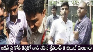 YS Jagan assault Case Accused Srinivasa Rao Release | Ys Jagan | Top Telugu Media