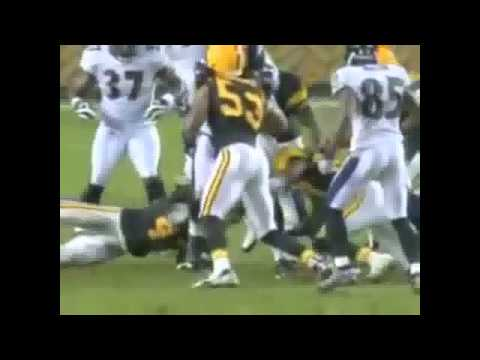 Troy Polamalu Career Highlights/Tribute