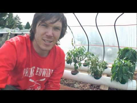 How To Hydroponics   S02e26 2011 Solar Hydroponic System Review