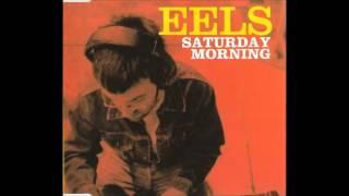 Watch Eels Sad Foot Sign video