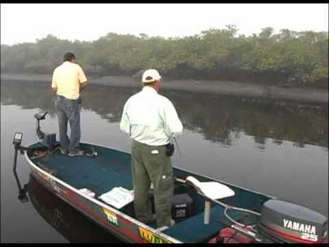 Pescaria De Robalos Com Iscas Artificiais - Parte - 1