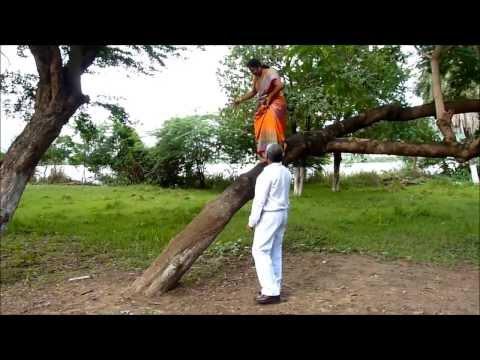 Jyothi getting down from tree at Bhavani island in Vijayawada .... Video by Tandavakrishna Tungala