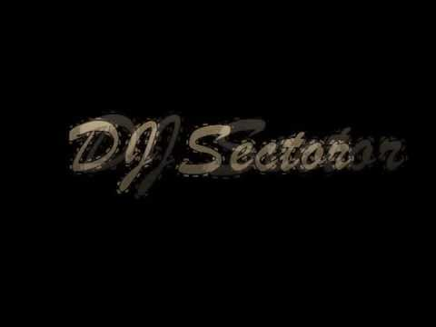 DJ Sector - Avici Hey brother and Wake me up Remix