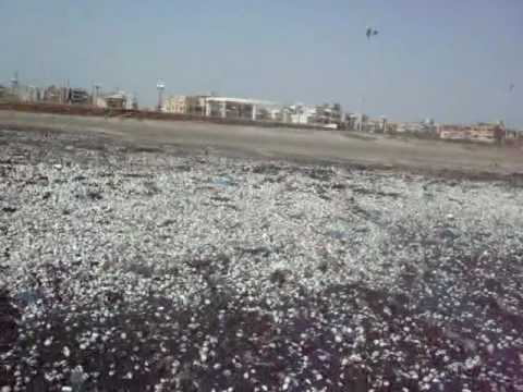 2010 Millions of SeaShells appearing on Pakistani Beaches-1.avi