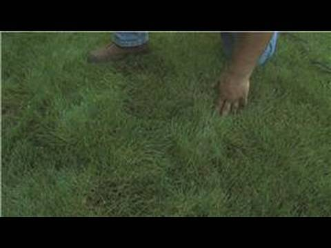 how to use a hoe to remove grass