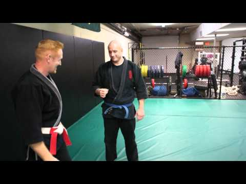 Handshake to 4-Fingers Control - Aikijutsu Technique Image 1