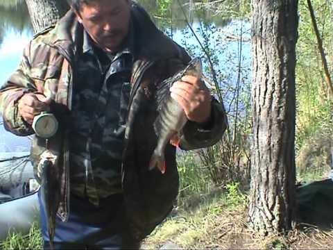 рыбалка охота в карелии весной