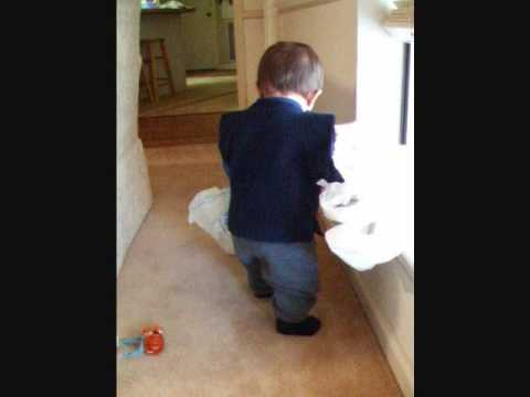 Bronson Playing Shopping Bags.wmv video