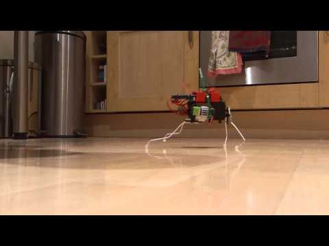Arduino Leonardo : Insect robot first run