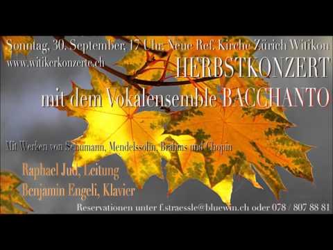 Шуман Роберт - Zigeunerleben, Op. 29, No. 3