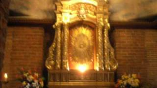 oh sacrament most holy- choir of divine mercy.wmv