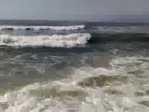 Ocean Annie's Beach Cam http://article.wn.com/view/2011/07/06/Lifeguards_Report_Makaha_Beach_Shark_Sighting/