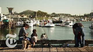 What to Do in San Luis Obispo, California | 36 Hours Travel Videos | The New York Times