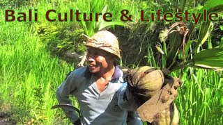 Bali Culture and Lifestyle: Traditional Bali Music, Homestay, & Bali Culture