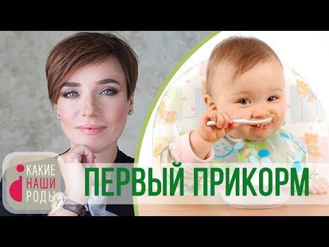 Первый прикорм ребенка: банки или готовка?