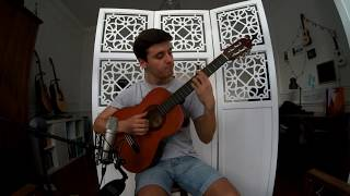 How I Met Your Mother Theme Song (Classical Guitar)