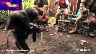 Chimp With AK-47 Shoots at Soldiers