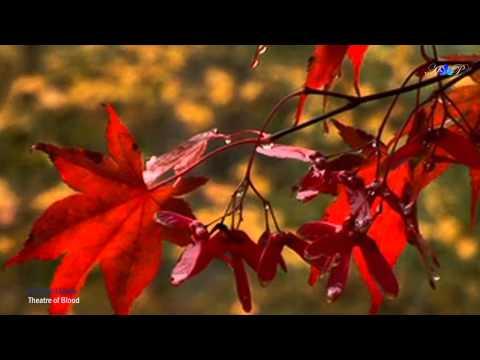 Музыка релакс осень скачать