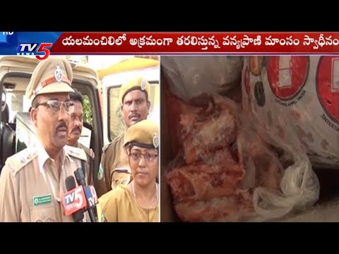 Illegal Transport of Wild-Animal Meat Seized | Visakha | TV5 News