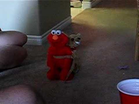 Elmo meets Humphrey the Humping Dog