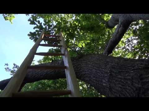 Climbing a Handmade Ladder