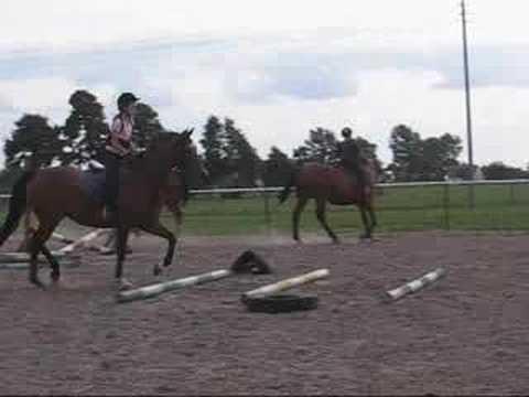 Moja jazda konna 2007r. (galop na lonży, na karym koniu nie jest mój!!)