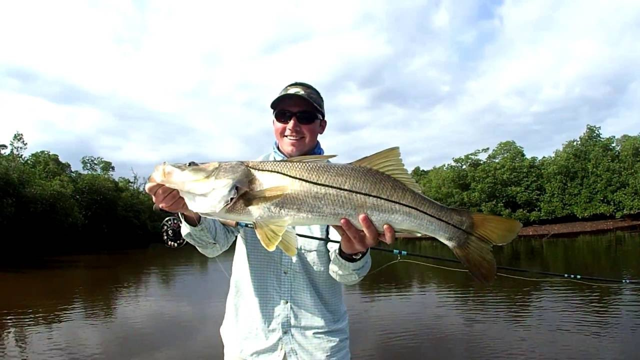 Fly fishing miami tarpon and snook everglades spring 2016 for Fly fishing miami