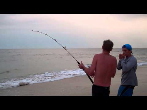 OC Shark Fishing 2013