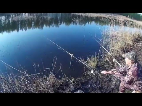 на что ловить по ранней весне на речке