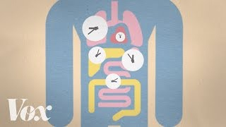 Late sleeper? Blame your genes.