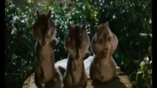 Chipmunks- Big Bang Theory Theme + Lyrics