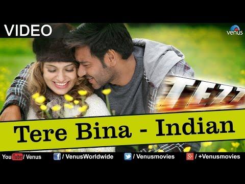 Tere Bina Full Song (Tezz)