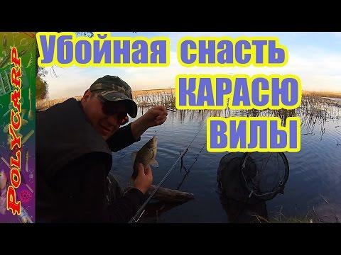 весенняя рыбная ловля  для карася равно карпа орудие какая