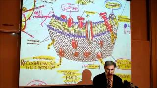BIOLOGY; CYTOLOGY; PART 1 by Professor Fink