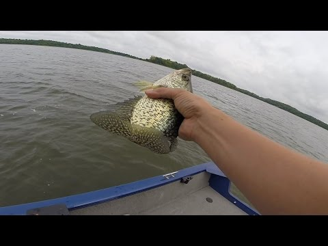 Crappie fishing report August 22, 2014